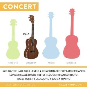 ukulele size-concert